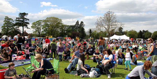 Marketing and PR support for Music in the Park, Thame, Oxfordshire.